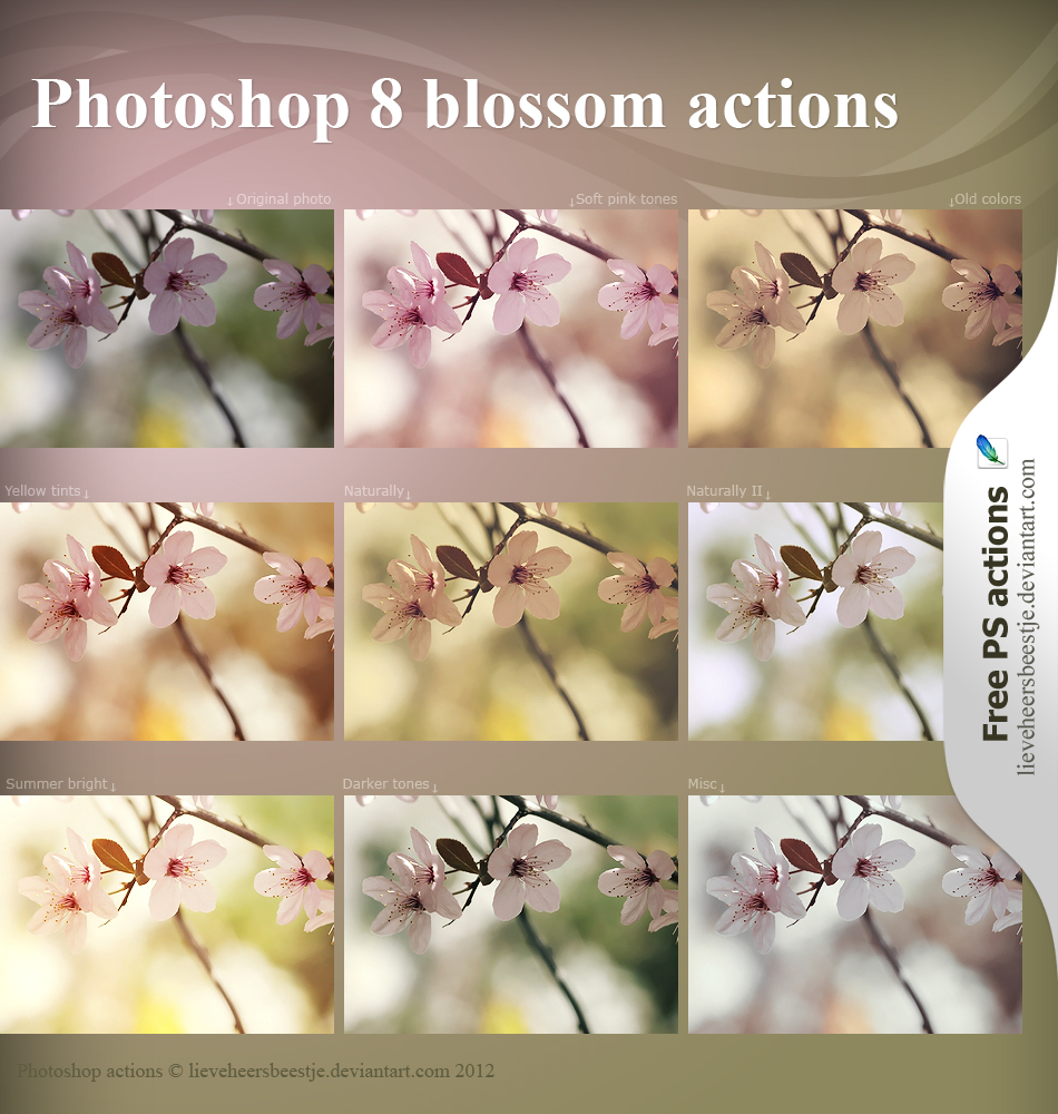 Photoshop blossom actions