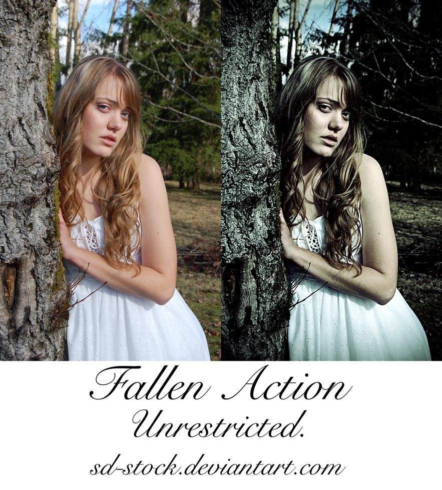 Fallen Action
